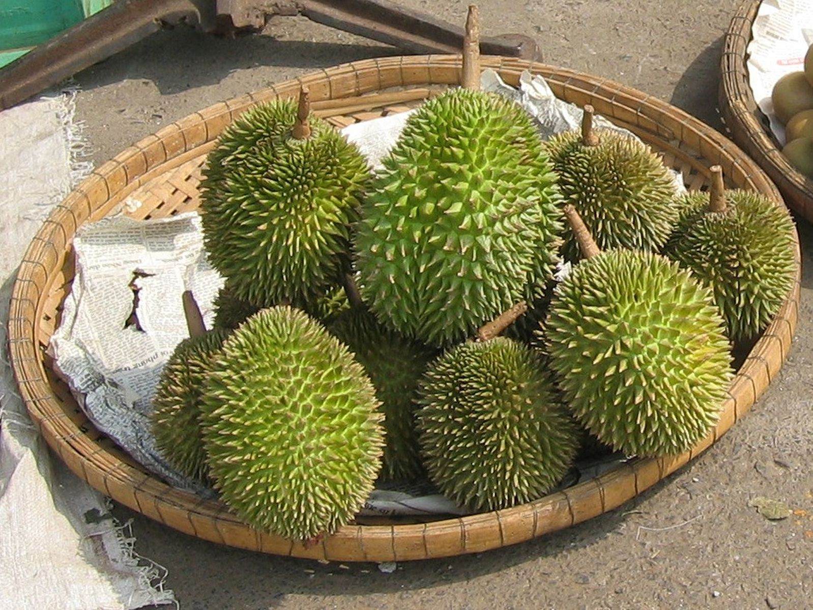 Chinese shoppers buy 80000 thai durians in one minute if the mail smells funky over the next few days someone around you could be one of the consumers in china who ordered 80000 thai durians a minute after an ccuart Image collections