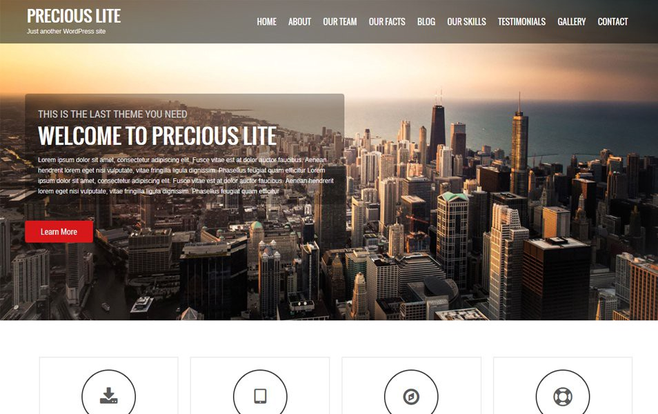 Precious-Lite-Responsive-WordPress-Theme1