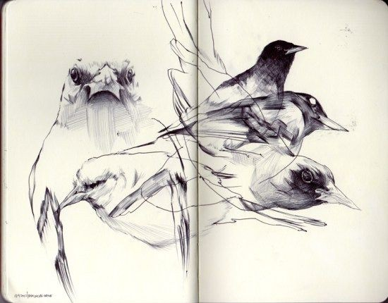 Abstract Sketches from the Sketchbook of Donny Nguyen