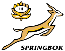 Rugby Championship Sud Africa Springbok