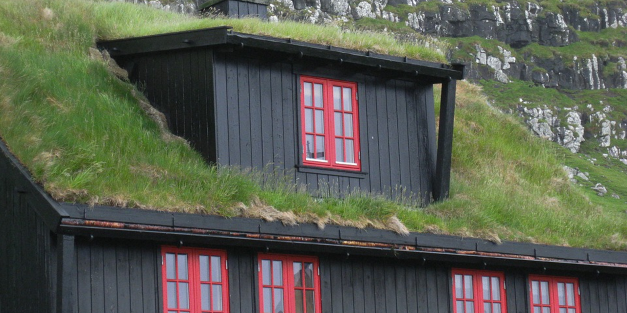 Incroyable DIY PLANTING A LIVING GREEN ROOF