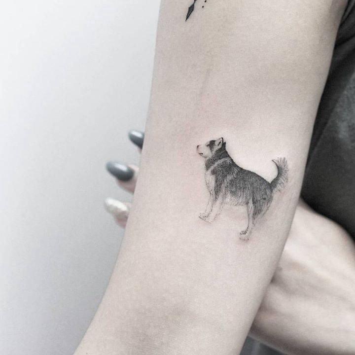 Dating Site For Tattooed Singles With Dogs
