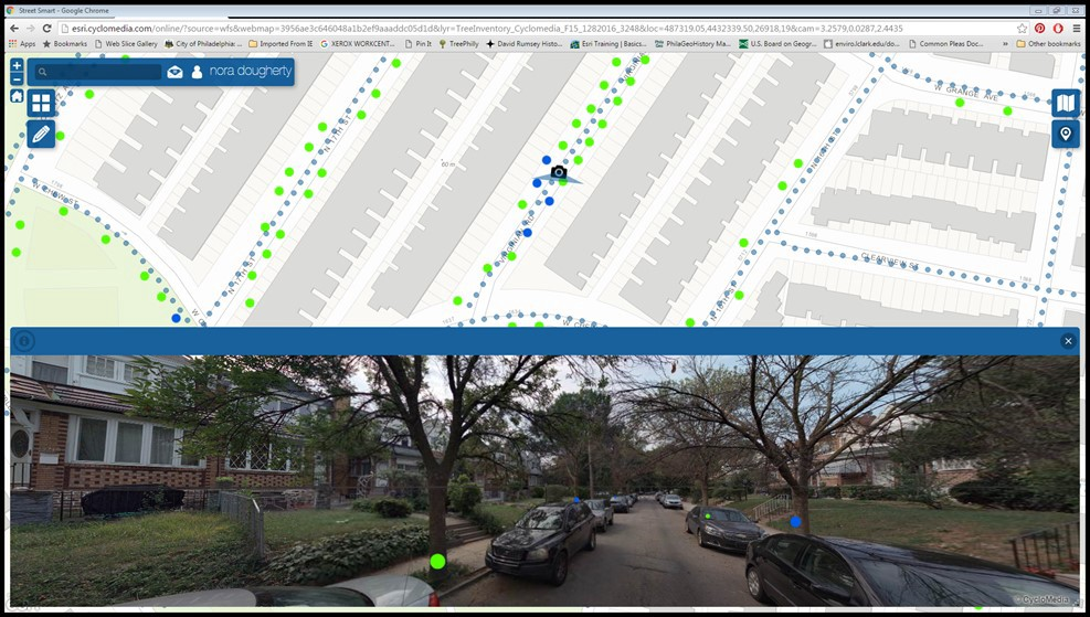 splitscreen of streetview trees and dashboard showing trees on a map