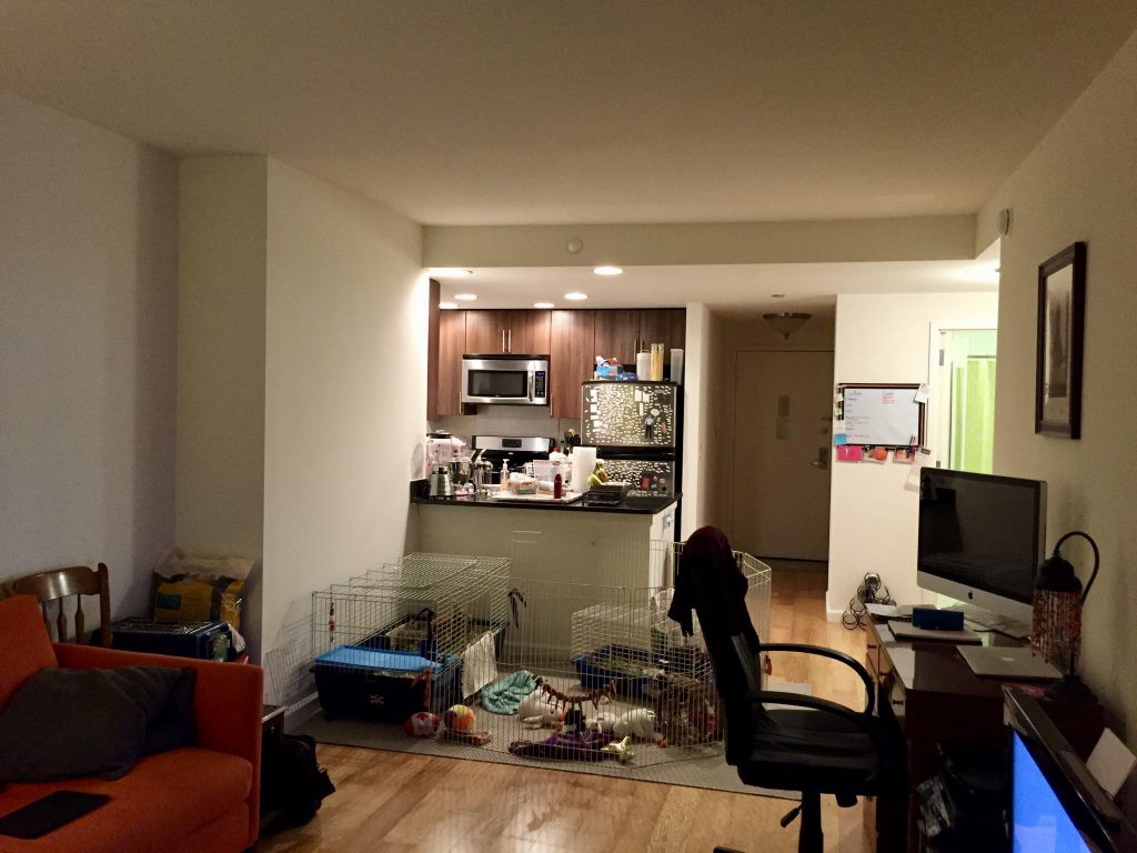 A post consisting mostly of pictures bayou to brooklyn for Living room upgrades