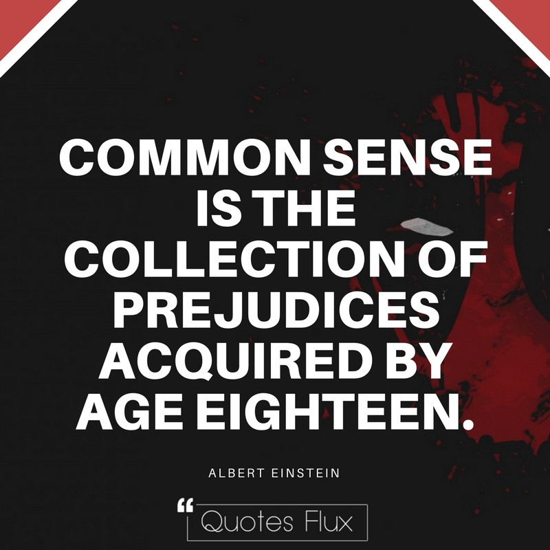 COMMON SENSE IS THE COLLECTION OF PREJUDICES ACQUIRED BY AGE EIGHTEEN - ALBERT EINSTEIN