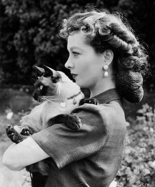 Vivien Liegh and a cat's profile