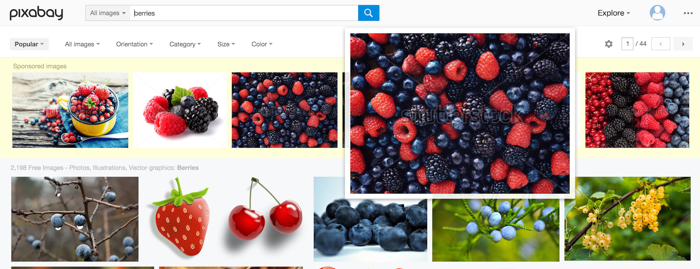 A search for 'berries' brings up not only photos but illustrations too - and apart from the sponsored ones in the top row, they're all free to use!