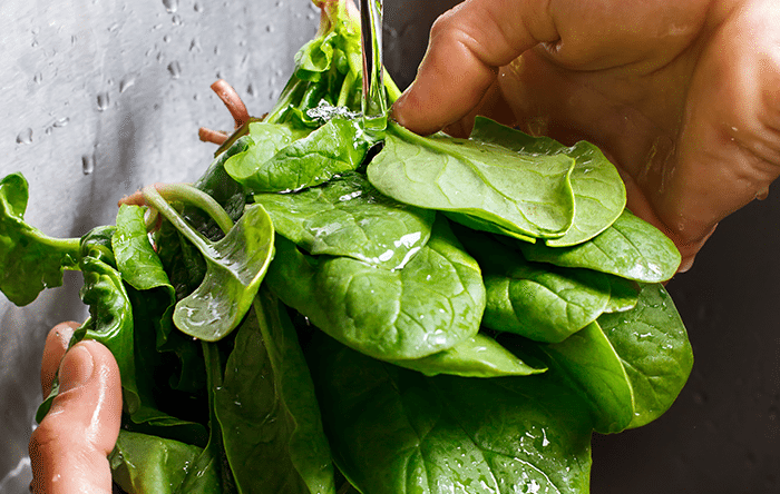 Person washing spinach