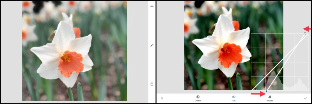Adjusting white point adn black point in Curves tool in Snapseed photo editing app