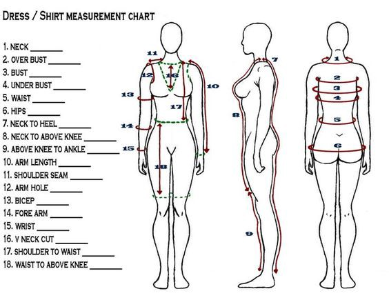 body-measurements