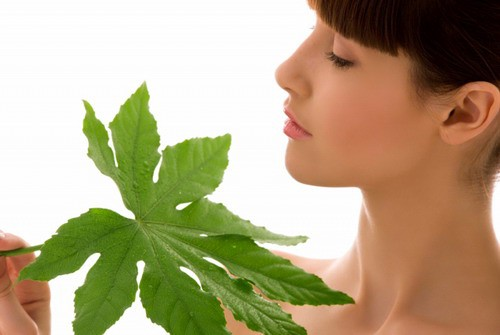 The Advantages of Organic Skin Care