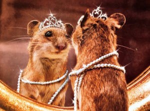 Mouse in Crown