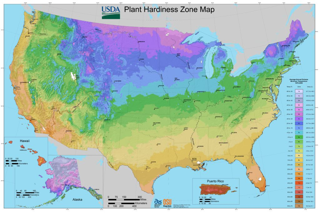 How to select a tree - USDA Hardiness Zones