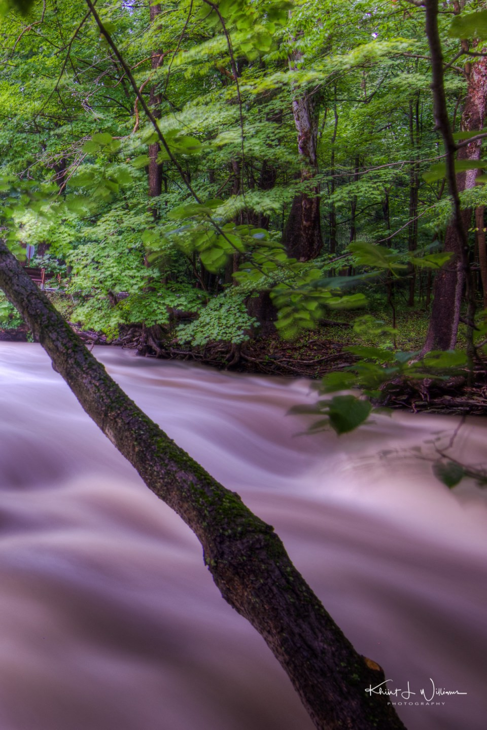The Rock Brook During a Flash Flood