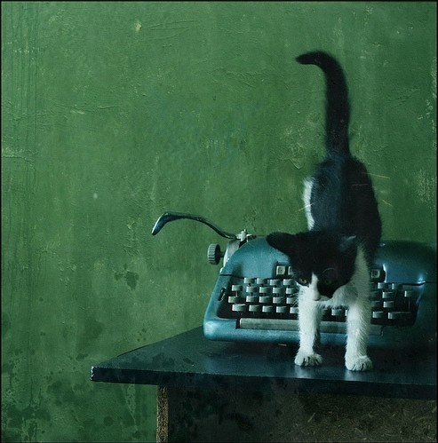 kitten and typewriter with green wall