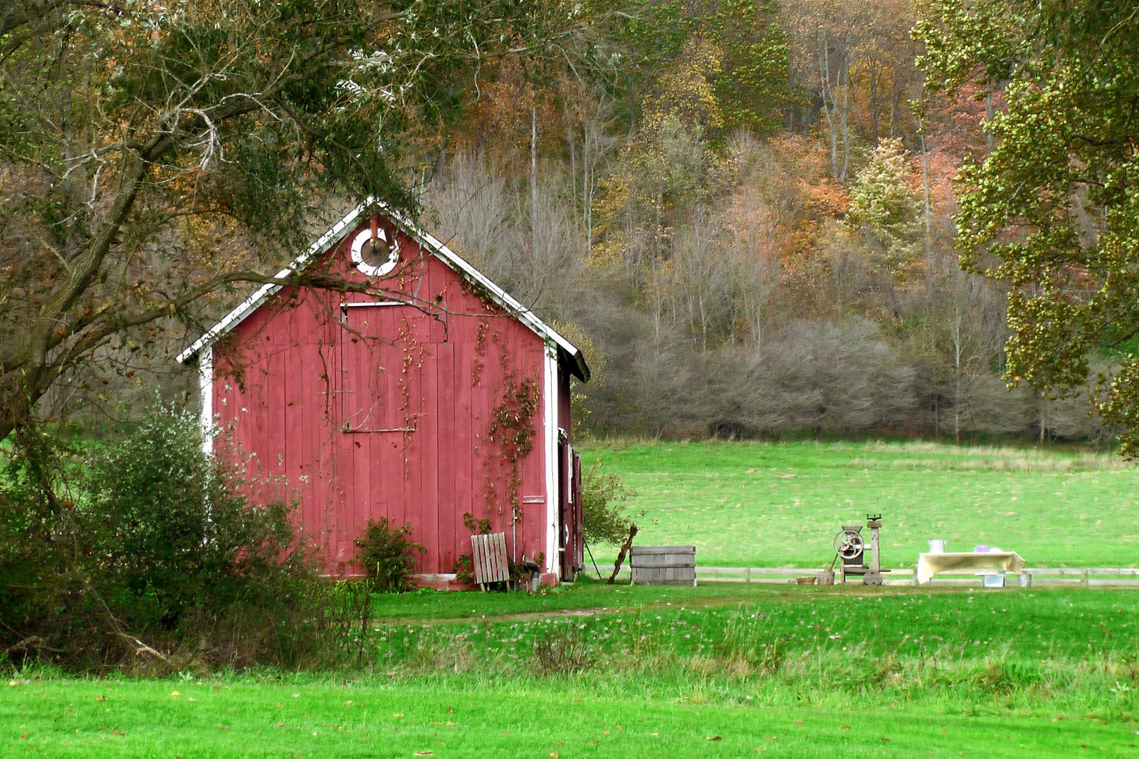 tiny-house-barn