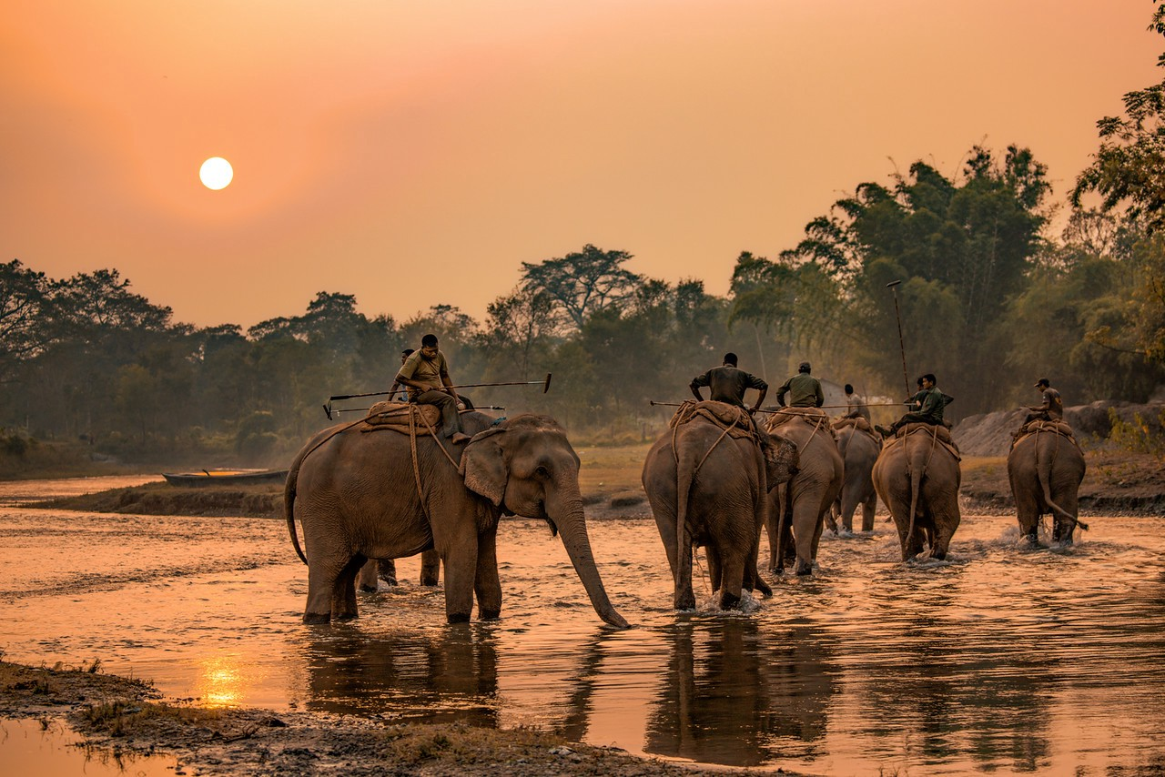 Elephant Polo team returning from practice in Nepal