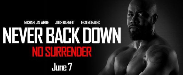 never back down no surrender download in hindi