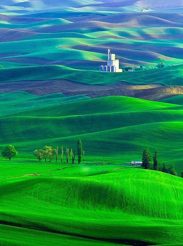 The-Palouse-region-Washington-State-USA-600x806