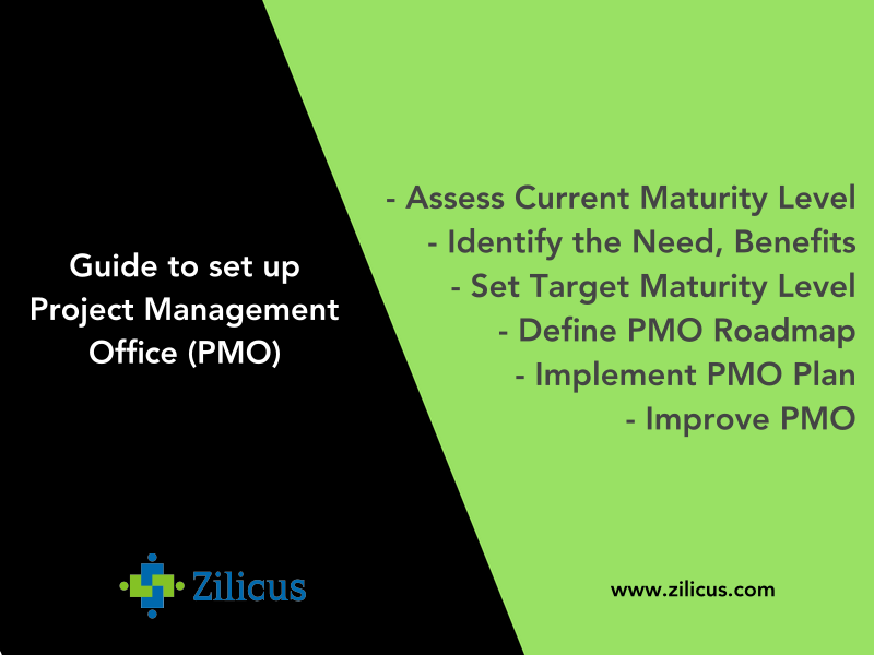 Guide to Set up Project Management Office ( PMO )