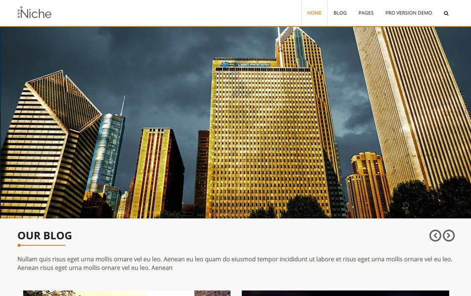 Niche-Responsive-WordPress-Theme1
