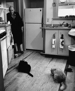 William Burroughs and his cats