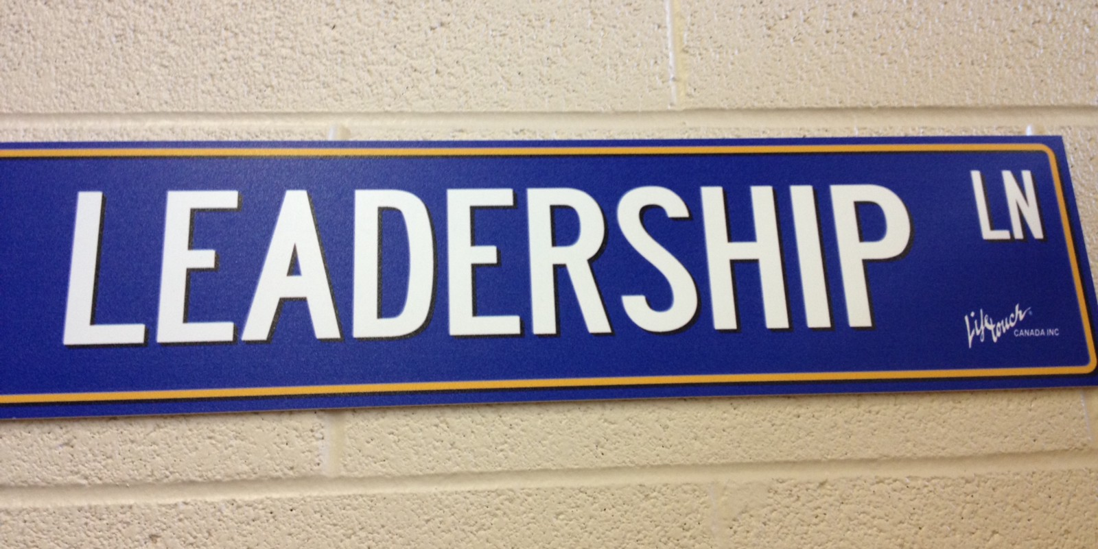 Leading From the Classroom: Suggestions for Teacher Leadership