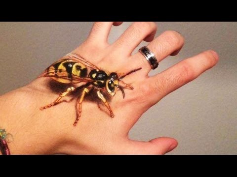 man stings self with death wasp causing instant death