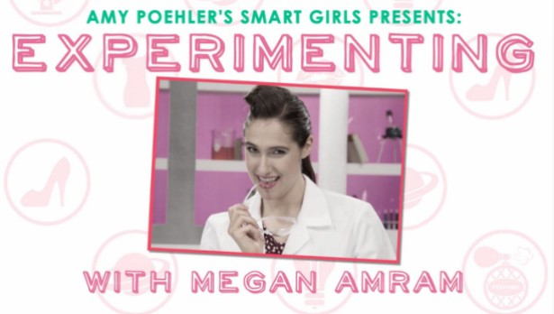 39 smart questions for smart girl megan amram amy - Olive garden interview questions ...