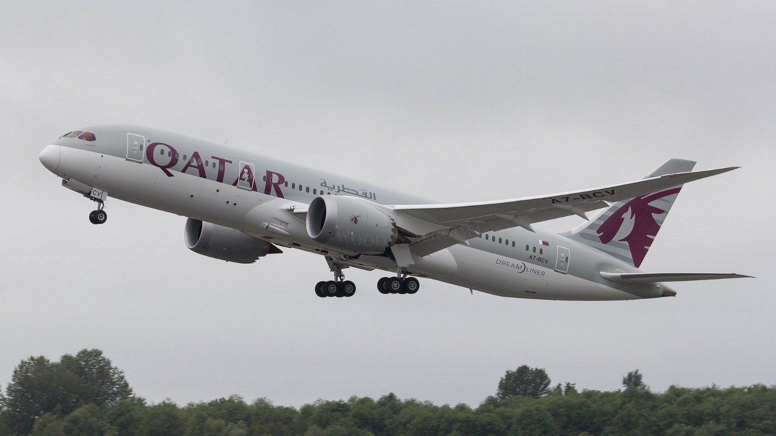 After a profitable year, Qatar Airways is facing murky skies