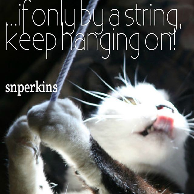 ...if only by a string, #keep #hanging on!