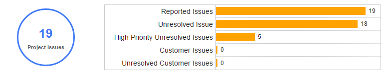 Project Issues Summary - KPIs for Project Manager