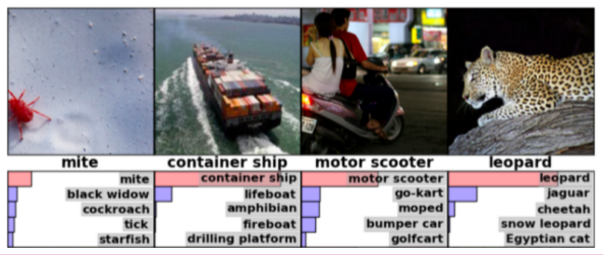 Images of a mite, a container ship, a motor scooter and a leopard, each with an algorithm's top 5 guesses at what it is. Each one has been correctly identified.