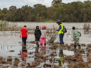 Kids wading into the wetlands to collect feathers for a citizen science project