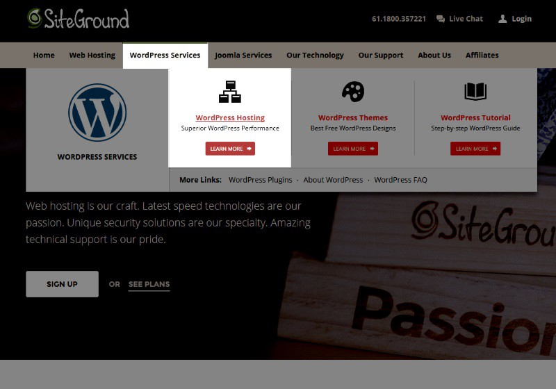what siteground hosting to use