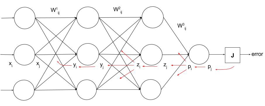 Rohan lenny 1 neural networks the backpropagation algorithm the error all the way to the weights in the input layer note that the weight itself is any arbitrary one in that layer in a fully connected neural ccuart Choice Image