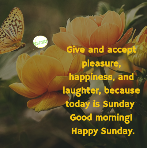 give and accept pleasure happiness and laughter because today is sunday good morning png 480x482 beautiful