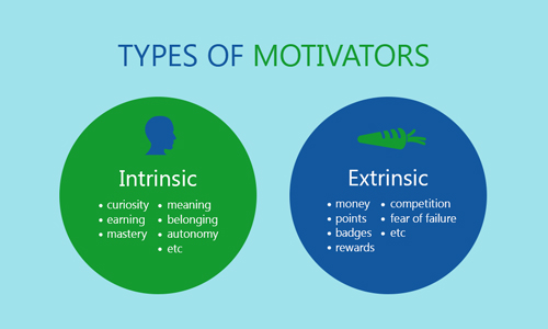 essays on entrepreneurship motivation and autonomy Free essays order now  it is important to understand that autonomy varies by job and position and the ratio of supervisor to employees varies as well.