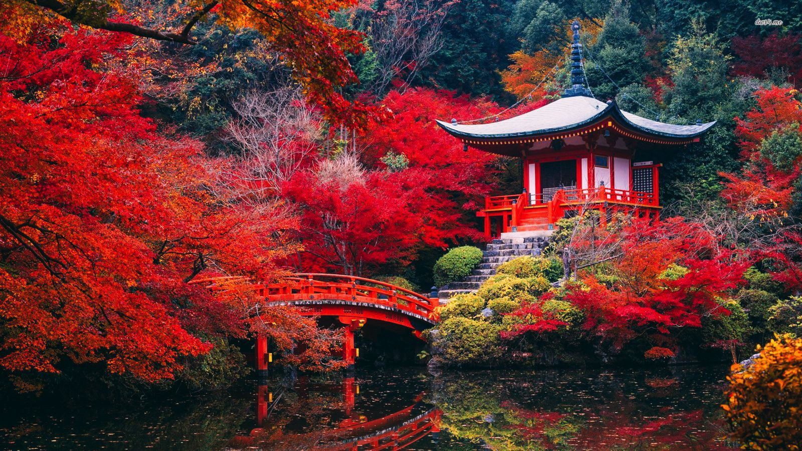 10 Amazing Travel Places You Need to Visit In Asia