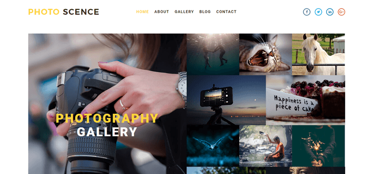 Best Most Favourite Photography Website Templates - Photography website design templates