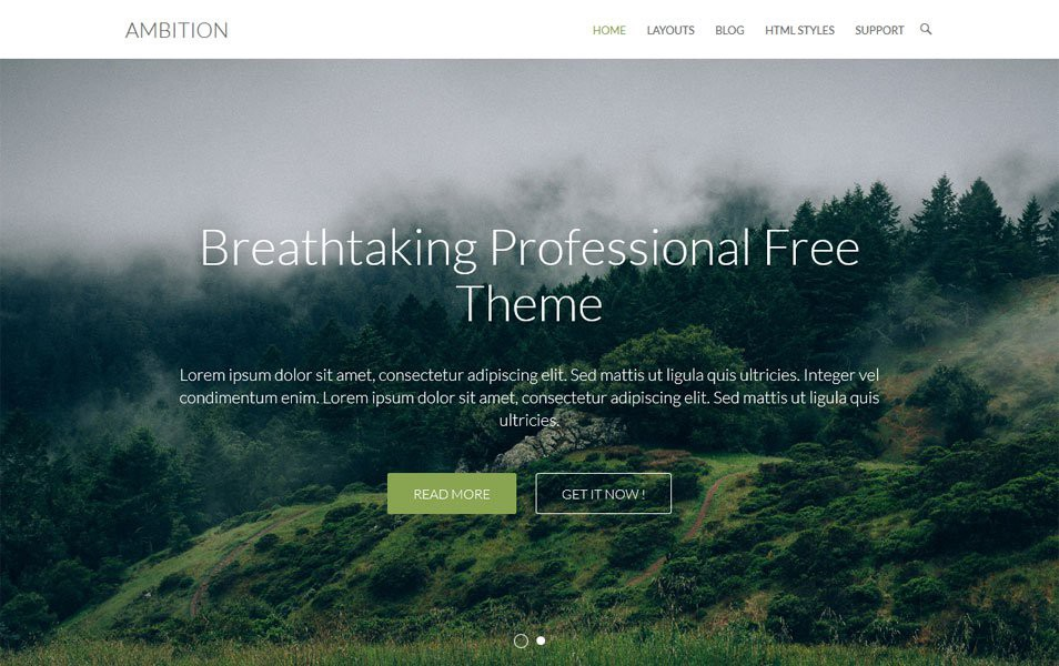 Ambition-Responsive-WordPress-Theme1