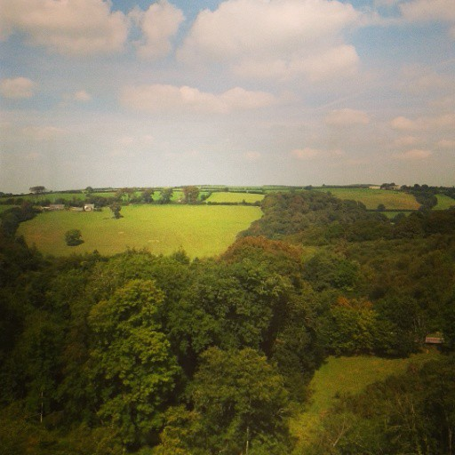 Drinking in all the gorgeously green scenery on the train journey home!
