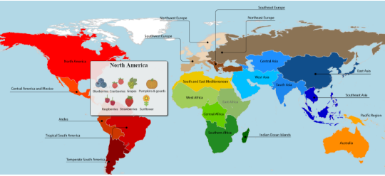 7 maps that will change how you see the world world economic this interactive map allows you to see where different food products come from sciox Choice Image