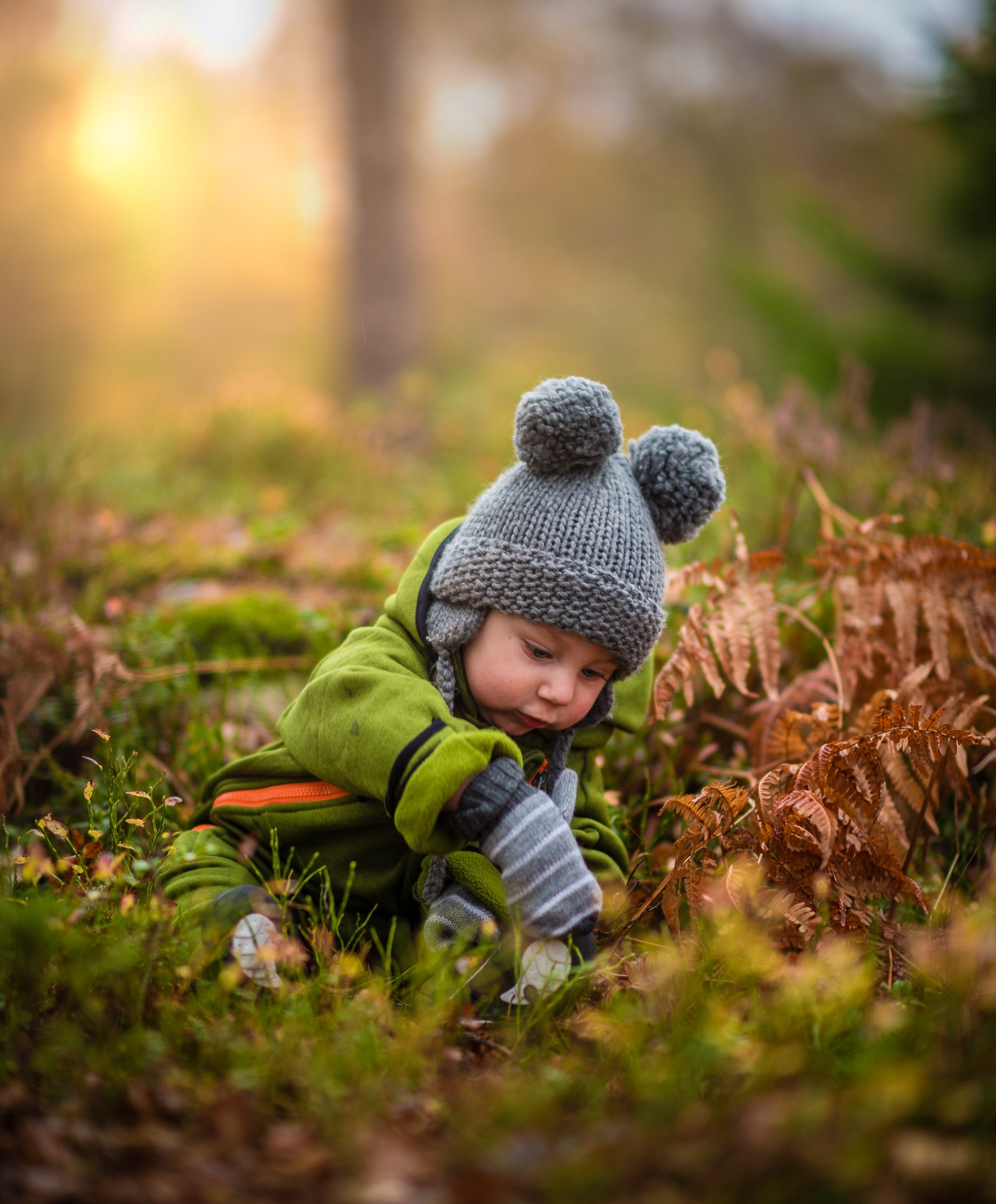 Curios child playing in the leaves