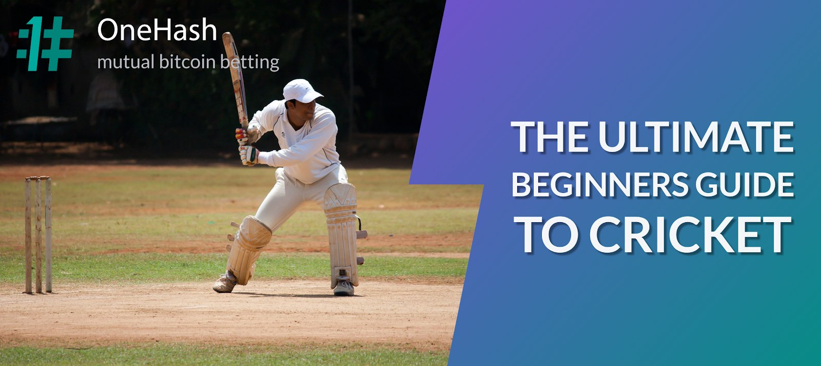 The Ultimate Beginners Guide To Cricket Onehash