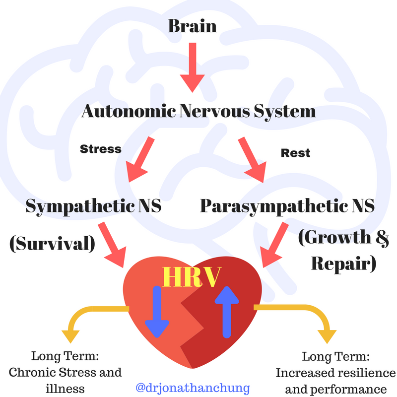 Post Traumatic Stress Disorder, Heart Rate Variability