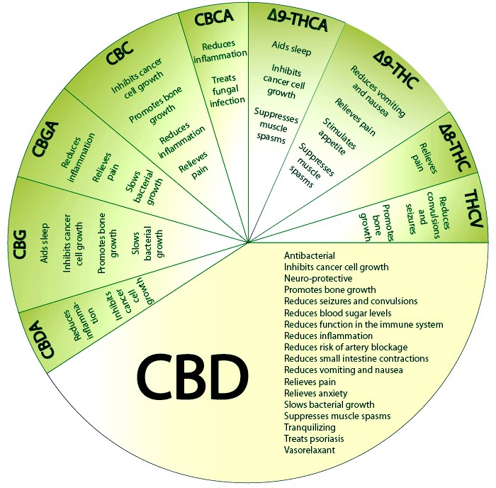 As Shown In The Chart Above Each Cannoid Offers Diffe Benefits For A Wide Variety Of Ailments Notably Cbd Most