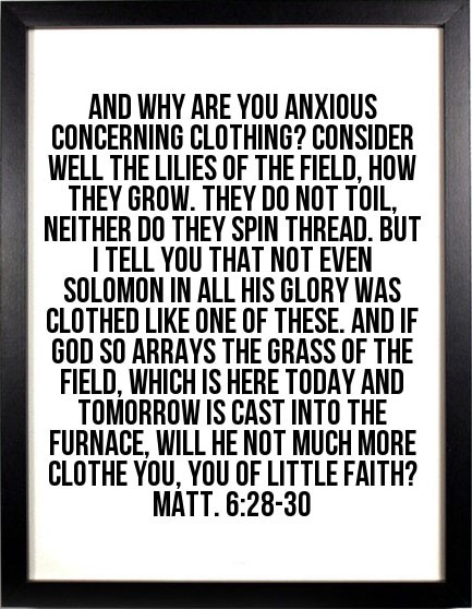 Matt. 6:28-30 And why are you anxious concerning clothing? Consider well the lilies of the field, how they grow. They do not toil, neither do they spin thread. But I tell you that not even Solomon in all his glory was clothed like one of these. And if God so arrays the grass of the field, which is here today and tomorrow is cast into the furnace, will He not much more clothe you, you of little faith?