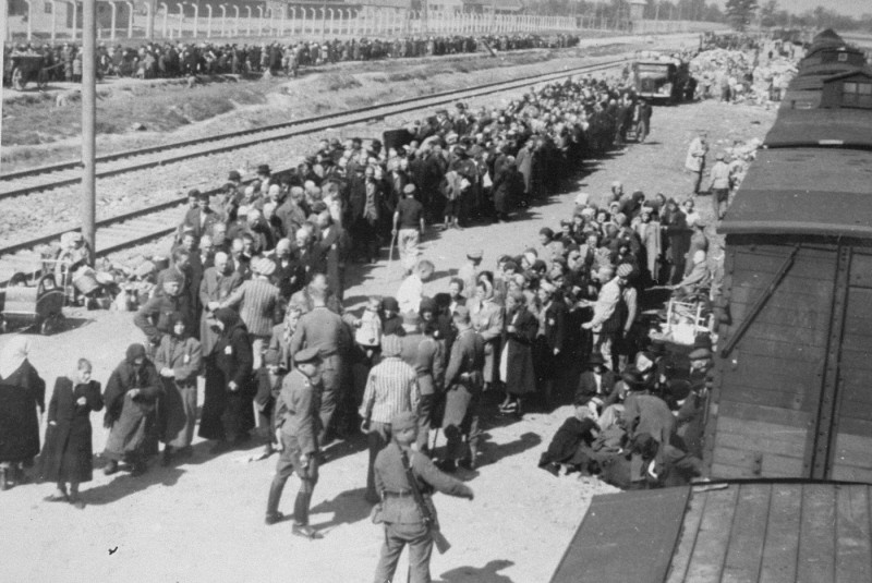 Image result for auschwitz arrival separation process