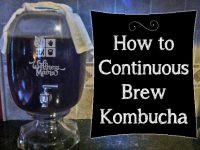 How to Make Kombucha Using the Continuous Brew System and Why you would want to